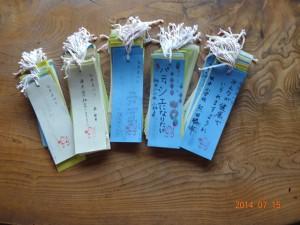 tanabata2014-006